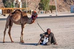 HURGHADA, EGIPT LUTY 22, 2010: Niezidentyfikowany uśmiechnięty wielbłądzi jeździec w Egipt Zdjęcia Royalty Free