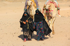 HURGHADA, EGYPT - Apr 24 2015: The old and young women-cameleers from Bedouin village in Sahara desert with their camels, Egypt Stock Photography
