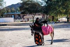 HURGHADA, EGYPTE 22 FÉVRIER 2010 : Femme et mule bédouines non identifiées en Egypte Photos libres de droits