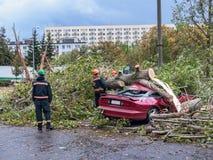 Hurircane damage Stock Photography