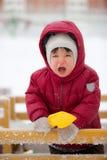 Hurlements d'enfant en bas âge photos libres de droits