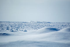 Huron λιμνών τοπίο παγόβουνων και αμμόλοφων χιονιού Στοκ Φωτογραφίες