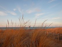 Huron λιμνών παραλία στη μεγάλη κάμψη Οντάριο Καναδάς το χειμώνα Στοκ φωτογραφίες με δικαίωμα ελεύθερης χρήσης