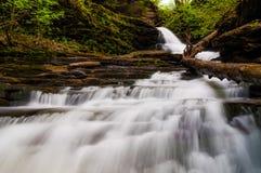Huronen oben schauen fällt, in Glen Leigh, Ricketts Glen State Park stockfotos