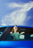 Hurrah! A vacation!. The cute beagle  travels in the blue car Royalty Free Stock Image