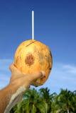 hurrar kokosnöten Arkivbilder