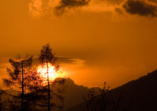 After hurricane. Two trees, one of them broken, shortly after hurricane. Sunset, Slovakia, High Tatras Royalty Free Stock Photos