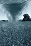 Hurricane and agriculture. Hurricane is incoming on a cornfield Royalty Free Stock Photos