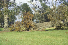 Hurricane Andrew damage, Jeanerette, LA area - National Disaster Stock Photography