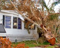 Hurricane Damage. Aftermath of hurricane in Florida royalty free stock photography