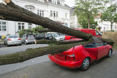 Hurricane damaged car. Car crashed from fallen tree during Hurricane Dusseldorf, Germany royalty free stock photo