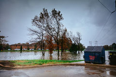 Hurricane  flood and wind damage. Tornado storm felled trees flooding Royalty Free Stock Photography