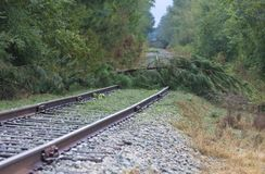 Hurricane Florence Damage. Trees across a railroad line after Hurricane Florence near Fayetteville North Carolina royalty free stock image