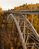 Hurricane Gulch Autumn in Denali National Park Royalty Free Stock Images