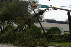Hurricane Harvey Impacts - Aftermath. Trees down due to wind and rain Royalty Free Stock Photo