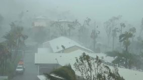 Hurricane, from a height, a palm tree, a house is opposed to the elements. Danger stock video