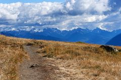 Hurricane Hill Trail. The Hurricane Hill Trail in Olympic National Park, Washington Stock Photography