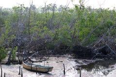 Hurricane Ike Damage royalty free stock photo