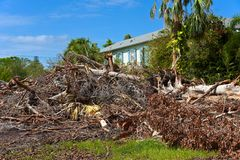 Hurricane Irma Cleanup. ANNA MARIA ISLAND, FL - October 2, 2017:Aftermath of Hurricane Irma on Anna Maria Island, Florida. Piles of Trees, Branches and debris Royalty Free Stock Photo