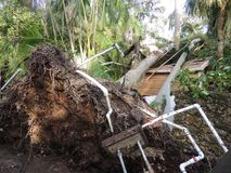 Hurricane Irma Damage. Storm Damage from Hurricane Irma. Trees crushed this shed and part of the house behind it. it also tore up the irrigation system at the stock photography