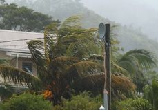 Hurricane palm - trees , house. Scene of the tropical hurricane, rain storm. House, palm-trees are attacked by disaster. Forest , mountain as the background Royalty Free Stock Photography