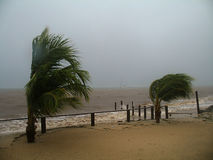 Hurricane Richard - Roatan, Honduras stock photos