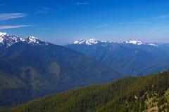 Hurricane Ridge. Olympic National Park, Washington, USA Royalty Free Stock Image