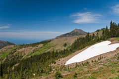 Hurricane Ridge mount and snow Royalty Free Stock Images
