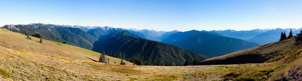 Hurricane ridge. Is a mountainous area in Washington's Olympic National Park.It can be accessed by road from Port Angele's and is opened hiking,skiing and snow Royalty Free Stock Photography