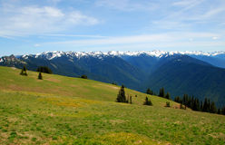 Hurricane Ridge Stock Photos
