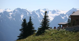 Hurricane ridge in Olympic national park Stock Photos