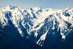 Hurricane Ridge, Olympic National Park royalty free stock photo