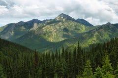 Hurricane Ridge of Olympic National Park Stock Images
