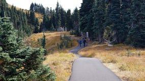 Hurricane Ridge, Olympic National Park, WASHINGTON USA - October 2014: A panoramic view on the Peninsula and hiking path Royalty Free Stock Photos