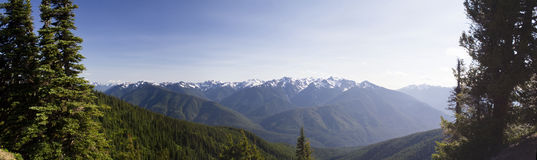 Hurricane Ridge Panorama Stock Photo
