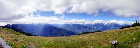 Hurricane Ridge Panorama Stock Photography