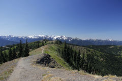 Hurricane ridge trail in olympic national park Royalty Free Stock Photography