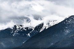Hurricane Ridge Royalty Free Stock Image