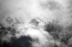 Hurricane Ridge. A view of Hurricane ridge threw the mist royalty free stock image