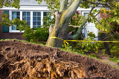 Hurricane Sandy Stock Photos