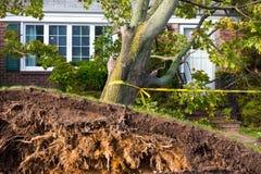Hurricane Sandy Stock Photos