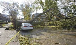 Hurricane Sandy. A closed street, broken sidewalk and damaged car by fallen tree after the Hurricane Sandy in Middle Village, Quens, New York royalty free stock image