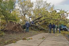 Hurricane Sandy Stock Photography