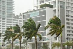 Hurricane Sandy. MIAMI - SOUTH BEACH - FLORIDA, OCTOBER 28: Miami South beach Lenox Ave flood aftermath of Hurricane Sandy on october 28 2012 in Miami South Stock Photos