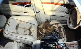 Hurricane Sandy's Aftermath. Inside of a Mercedes car that was totally flooded in Conney Island, Brooklyn during Hurricane Sandy, on October 29, 2012 Stock Photos