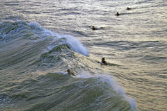 Hurricane Sandy Surfers Royalty Free Stock Photos