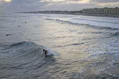 Hurricane Sandy Waves and Surfers Royalty Free Stock Photo