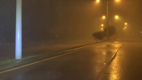 Hurricane, strong wind and rain, filming on the streets of the suburbs. Irma stock video