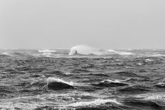 Hurricane waves Stock Image