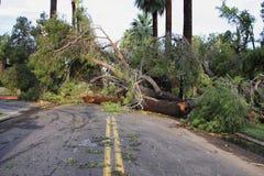 Hurricanes das alterações climáticas do aquecimento global Fotografia de Stock